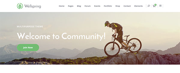 20+ Best WordPress bbPress forum themes 2016
